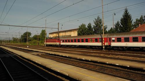 DSCN3520