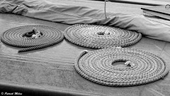 Geometric ropes (patrick_milan) Tags: rope geometric ship boat