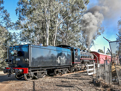 Steam train 221A class AC16, Swanbank Ipswich (Lance # Australian photographer) Tags: locomotive train loco engineer driver qr qpsr 221a ac16 queensland ipswich ac16no221a