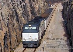 Trinchera Bustarviejo (Mariano Alvaro) Tags: tren renfe talgo directo burgos 50 aniversario trenes bilbao aranda trinchera