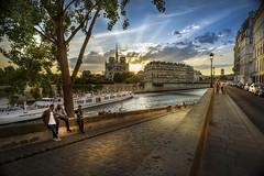 Paris, île Saint-Louis (Luc Mercelis) Tags: paris cityoflight ilesaintlouis notredame sun sonyilce7 minoltaprimelens24mm yellow red green blue citytrip tree people water