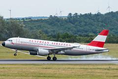 A320_OS9088 (JSI-VIE)_OE-LBP (Retro Livery)_2 (VIE-Spotter) Tags: vienna vie airport airplane flugzeug flughafen planespotting wien