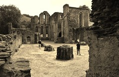 Photo of Valle Crucis Abbey Ruins