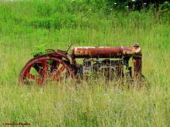 Old Tractor (~~BC's~~Photographs~~) Tags: chucksphotos canonsx50 oldtractor kentuckybackroadsphoto grass weeds wildflowers rust oldfarmequipment outdoors ourworldinphotosgroup earthwindandfiregroup explorekentucky solidarityagainstcancergroup photosthruyourlensgroup