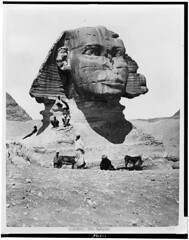 The Sphynx in 1860 (Static Phil) Tags: cairo thesphynx 1860 history