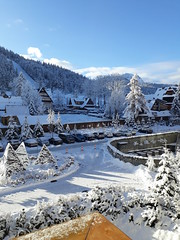 Zakopane-November'17 (55) (Silvia Inacio) Tags: zakopane poland polónia polska snow neve house casa tree árvore hotel mountain montanha nosal