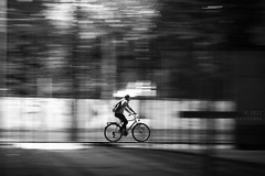 Segmented (Elios.k) Tags: horizontal outdoors people oneperson man cyclist cycling bicycle bike night safe helmet movement motion motionblur panning nightlights dark speed light shadow bokeh bernauerstrasse berlinwallmemorial gedenkstätteberlinermauer metalbars shadows blackandwhite bw monochrome travel travelling october2017 canon 5dmkii photography berlin germany deutschland europe