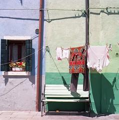 img008.jpg (francesco19739) Tags: window flowers ektar kodak hasselbald colors burano