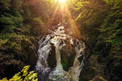 Sunshine over the Falls of Braan (Explored! Thanks for all Likes & Comments) (MilesGrayPhotography (AnimalsBeforeHumans)) Tags: 1635 sonyfe1635mmf4zaoss a7ii braan river riverbraan waterfall forest britain dusk europe evening fe f4 glow goldenhour haze iconic ilce7m2 landscape lens landscapephotography outdoors oss photography photo perthshire perthandkinross dunkeld hermitage thehermitageofdunkeld tranquil rocks rays raysoflight scotland scenic sky sunset sunlight sunshine sonya7ii sony scottish scottishlandscapephotography scottishhighlands town trees uk unitedkingdom village waterscape wide water wideangle zeiss summer sunburst sunflare