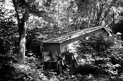 Le coin des jardiniers... (woltarise) Tags: montréal cabane outils matériel botanique jardin arbres arbustes argentique film ilford hp5 yashicat4super