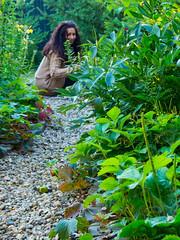 Ligia in the garden (Raoul Pop) Tags: garden path summer ligia plants watering outdoors sunlight evening home