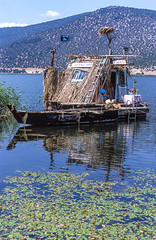 Prespes, bird hospital I (spipra) Tags: greece prespes lake boat house ecology water landscape nature