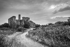 Path to Ruins (Mono) (Andrew Hocking Photography) Tags: southwhealfrances greatflatlode enginehouse tinmine cornwall cornish heritage landscape ruins mine shaft redruth fourlanes carnkie history overcast relic abandonned old poldark rosspoldark cloudy