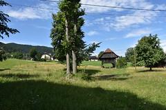DSC_1846 (gregorv) Tags: slovenia slovenija kum planine mountains mountain nature narava