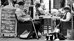 It's a dogs breakfast. (Neil. Moralee) Tags: neilmoralee breakfast cafe man woman street candid dog food eating coffee table hat old mature wiskers wrinkles sitting teignmouth devon black white blackandwhite monochrome bw bandw high contrast neil moralee nikon d7200 dinner tea english cooked walking stick finley brown