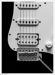 Pick Me Up 197/365 (John Penberthy ARPS) Tags: pickups 16jul18 d750 nikon monochrome guitar strings electricguitar 3652018 mono volume 365the2018edition blackandwhite day197365 johnpenberthy