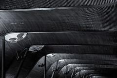"MAD Airport (michael_hamburg69) Tags: madrid comunidaddemadrid spanien es spain españa espagne flughafen airport madridbarajas ""adolfo suárez"" aeropuertoadolfosuárezmadridbarajas mad terminal architecture architektur wood wooden ceiling holzdecke design"