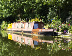 Grand Union Canal Near Southall (London Less Travelled) Tags: uk unitedkingdom england britain london westlondon city urban canal grandunion paddington water waterway reflection boat flowers colour color