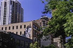 Still keeping an eye out (aerojad) Tags: eos canon 80d dslr 2018 summer outdoors city urban sigma chicago streetphotography streetscape streetart mural murals