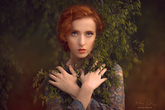 Gaurded ({jessica drossin}) Tags: jessicadrossin woman wwwjessicadrossincom leaves lace dress hands portrait redhair redhead freckles nature