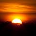An African Sunset (Facebook Cover)