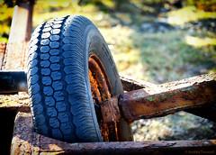 15 Unattractive (manxmaid2000) Tags: rust decay trailer wheel tyre axle old abandoned tread cobweb rusty sunlight shadow broken rustic metal