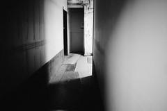(gilbert terrazas) Tags: leica studio monochrome black white