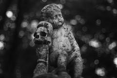Une histoire perdue (Patrice StG) Tags: pentax pentaxart chinon50mmf14 bokeh cimetière cemetery gimp nb bw noiretblanc blackandwhite crâne skull enfant child