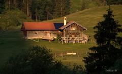 Es ist noch ruhig auf der Alm! (Renata1109) Tags: baum alm gebäude gras holz dach wald landschaft feld weide bayern berge alp deutschland sonnenaufgang sudelfeld wanderung bavaria outdoor germany mountain sunrise landscape
