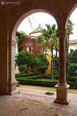 20101114 Sevilla (82) O01 (Nikobo3) Tags: europe europa españa spain andalucía sevilla casadepilatos arquitectura architecture travel viajes panasonic panasonictz7 tz7 nikobo joségarcíacobo