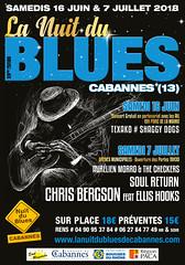 La Nuit du Blues Cabannes - Provence