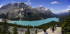 """""""Wolf Lake"""" (VanveenJF) Tags: peyto wolf sony a7ll 35mm zeiss stitch pano canada kanada lake view tourist bow summit banff alberta summer tree pines beatle water"""