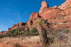 SedNov-10 (J-Riv Photo) Tags: arizona scottsdale sedona jerome redrock grandcanyon sky tuzigoot