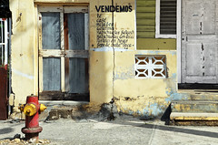 Vendemos (emerge13) Tags: puertoplata repúblicadominicana architecturaldetails buildings architectureheritage architecture storefronts urbandecay abandoned tcp decay facadas façades saariysqualitypictures