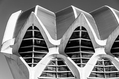 The giant clam (michael_hamburg69) Tags: valència spain spanien valence espagne ciutatdelesartsilesciències ciudaddelasartesylasciencias stadtderkünsteundderwissenschaften architekt architect santiagocalatrava félixcandela españa museum