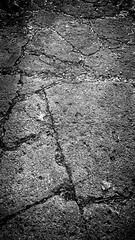 The Path 5 (Jeffery Womack) Tags: 2018earylyspring mayburystatepark michigan blackandwhite crackedwalk dramaticmonochrome hikingtrails monochrome nature novi oldpavement samsunggalaxy8plus smartphonephotography water