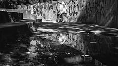 sea by the summer (berberbeard) Tags: hannover fotografie photography urban berberbeard berberbeardwordpresscom germany ilce7m2 itsnotatrick street sony deutschland menschen people bnw schwarzweiss monochrome blackandwhite graffiti streetart puddle reflection spiegelung