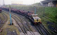 WEstoe 14 St Hilda sdgs a689 (Ernies Railway Archive) Tags: hartoncoalcompany westoe ncb southshields