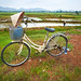 Bicycle parked near rice paddies
