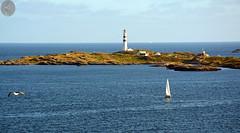Oksøy Leuchtturm / Oksøy lighthouse (victorlaszlo73) Tags: norwegen norway somm summ sea meer küste coast leuchtturm lighthouse sunset sonnenuntergang