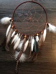 Natural (echt.nz) Tags: dreamcatcher dreamcatchers feather feathers hoop skill craft handmade dream catch catcher commission nature pure wwwechtnz natural colors colours