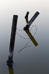 Salty posts (Photodoos) Tags: reflections water post barbedwire minimalist 70200 canon canonnl