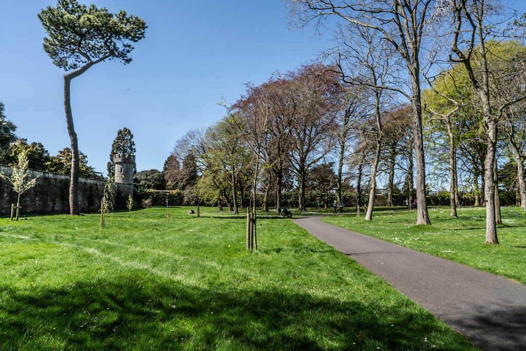 VISIT TO THE NATIONAL BOTANICAL GARDENS [GLASNEVIN DUBLIN]-138595