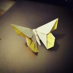 June's Butterfly (guangxu233) Tags: origamiart origami paperart paper paperfolding michaelglafosse butterfly 折り紙作品 折り紙 折纸 art
