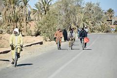 Market Day (meg21210) Tags: marketday men bicycles road street streetscene desert sahara morocco moroccans