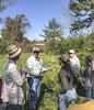 oklawaha pollinator planting 042118-26 (NCAplins) Tags: hendersonville northcarolina unitedstates us