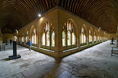 New College Cloisters, Oxford (Thomas Roland) Tags: travel rejse trip city by oxford uk great britain england oxfordshire university new college constituent cloisters kloster hall gang courtyard gård spring march marts forår 2018 architecture building universitet nikon d7000