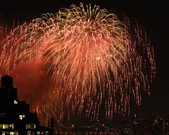 Macys Fireworks NYC 2018-24 (Diacritical) Tags: nikond850 pattern 70200mmf28 20secatf80 july42018 83617pm f80 165mm brooklyn macys4thofjuly fireworks