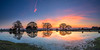 Dawn Panorama (nicklucas2) Tags: landscape newforest mogshade tree cloud sunrise pond reflection water dawn panorama