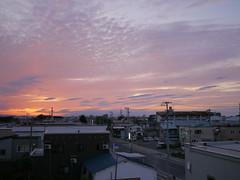 Aomori City (しまむー) Tags: panasonic lumix gx1 g 20mm f17 asph natural train tsugaru free pass 津軽フリーパス